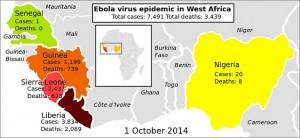 Casos de ébola en África Occidental hasta el 1 de octubre de 2014 - Imagen de Dominio Público realizada por Mikael Haggstrom