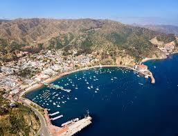 Isla Catalina. Foto por chamberofcomerce.com
