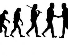 CooperationHuman_Evolution