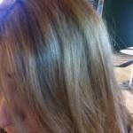 Cuida y proterge tu cabello con champús naturales bio. Imagen by Alicia Point