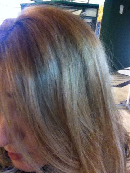 Champús naturales bio para cuidar el cabello