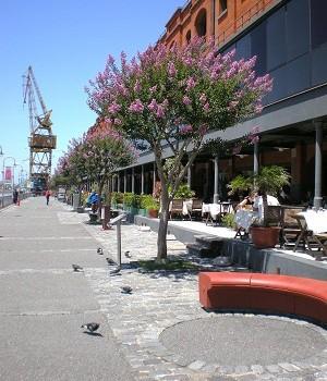 Foto Luján frank Maraschio – Ciudad de Buenos Aires – Puerto Madero