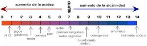 Escala de PH orientativa. Imagen by PinkDeath