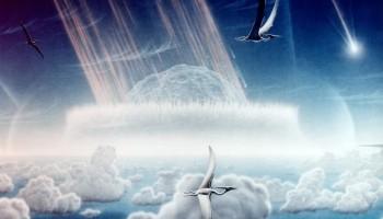 Extincion Cretacico Paleogeno