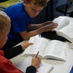 Comparativa diccionarios escolares, mejores diccionarios familiares