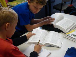 Usando en clase el diccionario