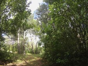 Valle del Tiétar, pueblos y senderismo para amantes de la naturaleza