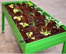 mesa de cultivo