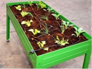 La mesa de cultivo facilita  el espacio en un huerto urbano en terrazas o balcones.