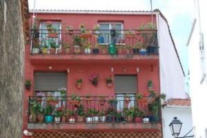 Los huertos caseros son posibles en balcones o terrazas