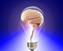 cerebro y amnesia