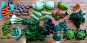Fruta y verdura, fundamentales para una dieta equilibrada