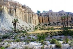 """""""Oasis"""" en el desierto de Mahoya"""