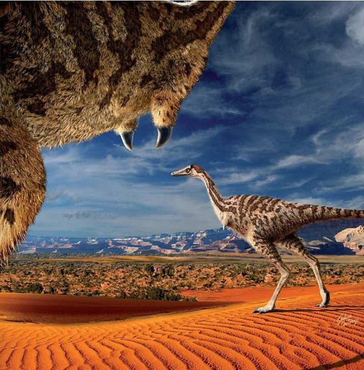 ¿Cuántas especies de dinosaurios existieron en el planeta?