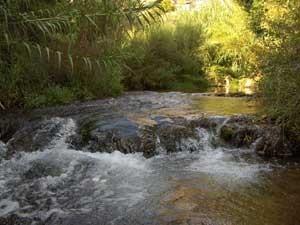 Rio Mundo. Foto cedida del ayuntamiento de Ayna