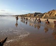 Recorriendo las playas de Doñana a caballo