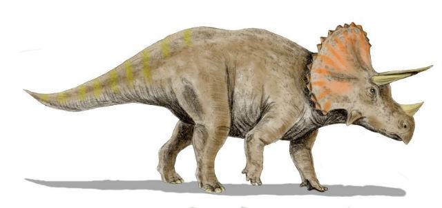 Cinco datos sorprendentes del Triceratops
