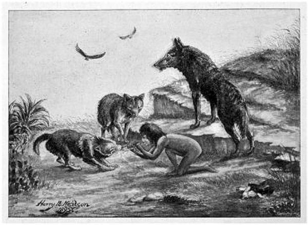 El misterio de los niños salvajes
