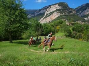 Caminos y senderos en Castilla La Manchailla La Manchha