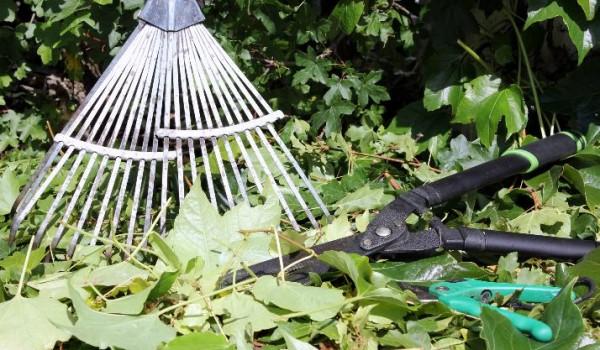 Herramientas de jardiner a b sicas para el jard n for Herramientas para el jardin