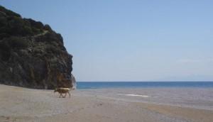 Playa de Gjipe