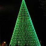 Mejores árboles de Navidad para visitar