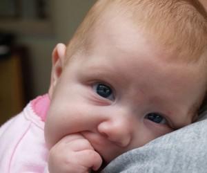 Bebé pelirrojo mirando a cámara mientras se muerde el puño