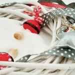 La mejor decoración para tu hogar esta Navidad