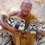 Naturaleza y aventura en el Templo del Tigre