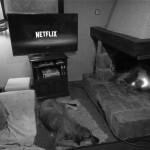 Netflix: la tecnología streaming para el espectador con clase