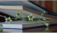 Flor y libro