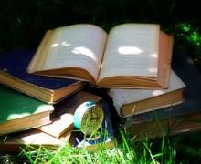 Novelas negras suecas