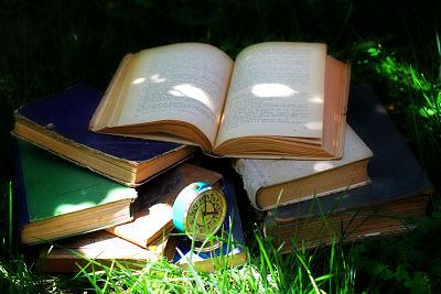 Novelas negras escandinavas: 5 lecturas recomendadas para ávidos lectores.