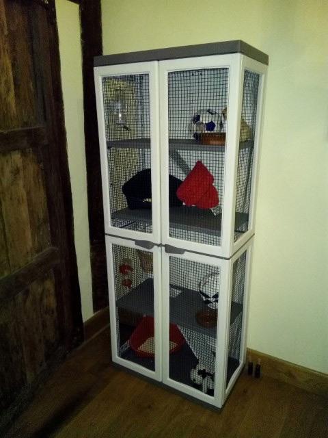 Fabrica tu propia jaula para roedores