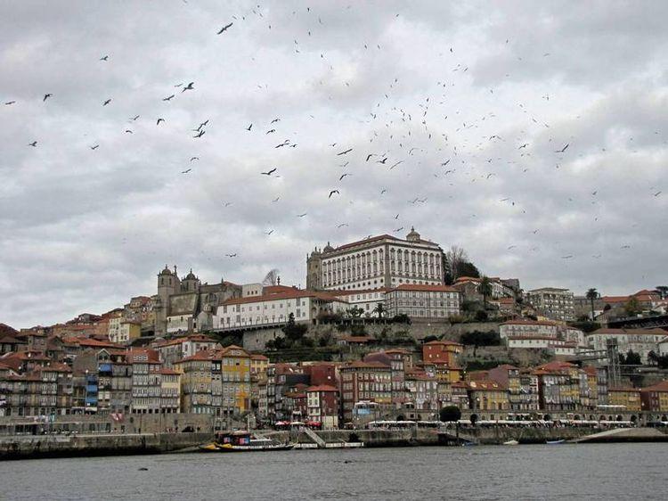Turismo en Oporto, Norte de Portugal: qué ver, mejores guías de viaje