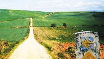 Camino de Santiago con la señal