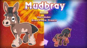 Mudbray