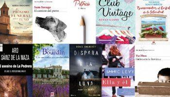 Novelas recomendadas navidades 2016-2017