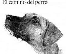 "Reseña de la novela ""El camino del perro"""