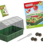 juguete de ciencias cultivar plantas