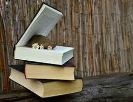 12 mejores libros para empezar 2017