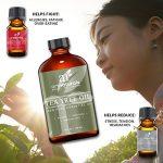 Aceite de árbol de té: propiedades y aplicaciones en cosmética