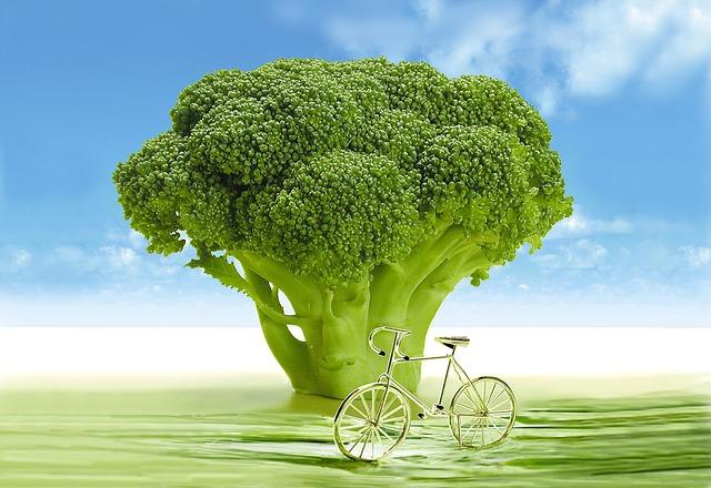 Brócoli, alimento antienvejecimiento