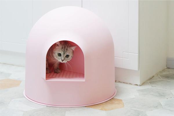 Los 10 mejores areneros para gatos de venta online