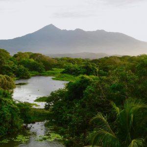 Vegetación del Volcán Mombacho, rain forest