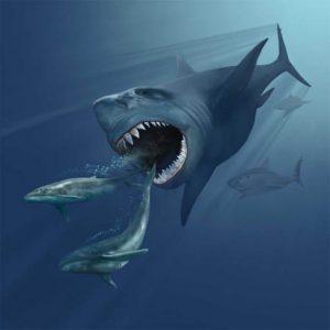 Megalodón persiguiendo a ballenas