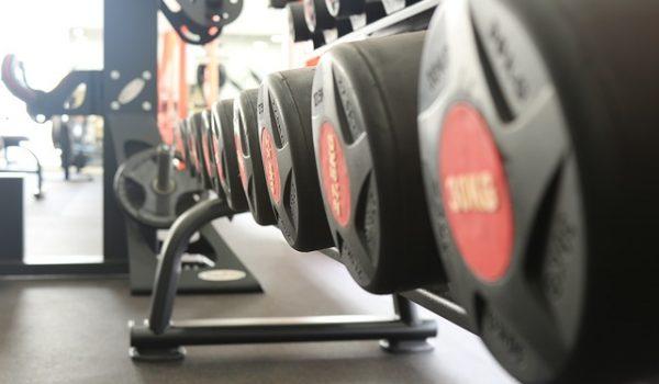 pulseras de actividad para fitness