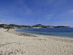 El movimiento pet friendly cuenta con buena acogida en las playas de las Islas Baleares