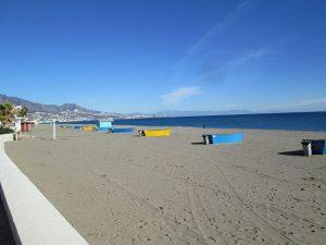 En Andalucia cada vez existen más playas para perros, siendo Málaga la provincia con mayor número de ellas