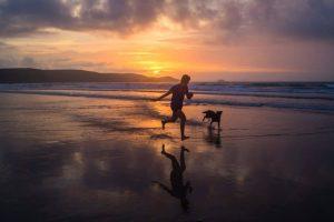 Las playas para perros se ha incrementado en más de un 30% con respecto al pasado año.
